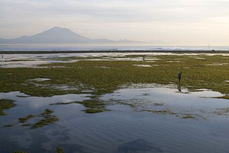 Photo of a beautiful beach in Sanur, Bali during low tide Stock Photo - 4840961