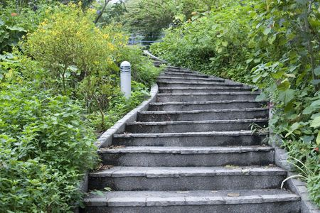 stone stairs: Photo of Stairs in a flower garden.