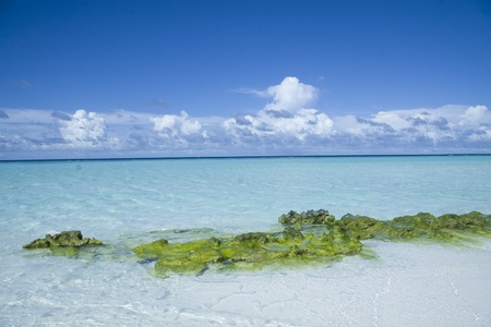 Beautiful maldives beach with clear transparent water and some green rock Stock Photo - 8433017