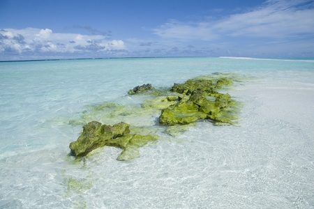 Beautiful maldives beach with clear transparent water and green rock Stock Photo - 8433025