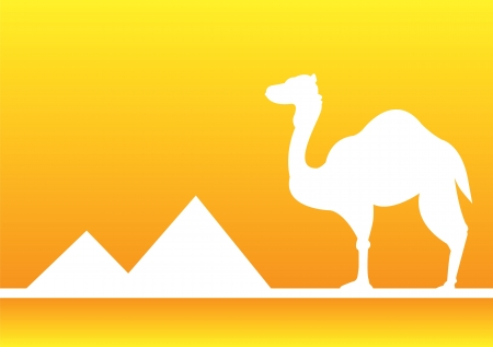 Silhouette of camel in the desert with pyramids in Egypt  Vector