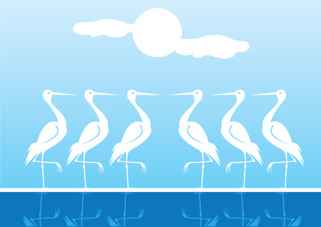 water reflection: Vector illustration of Water Birds standing on one leg with reflection on water. Blue sky with sun and clouds as background.