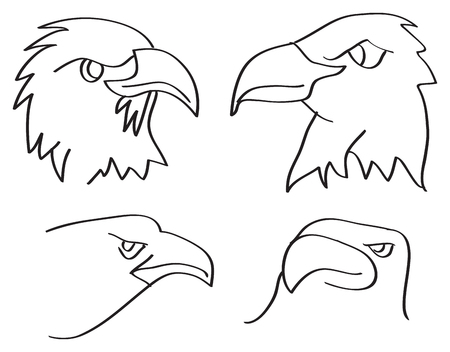 birds eye view: Line art vector illustration of heads of eagles in side view and three-quarter view isolated on white background.