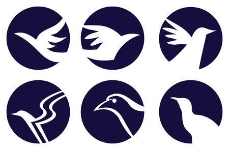 logo element: Set of six white bird silhouettes in dark circle. Vector conceptual signs isolated on white background.