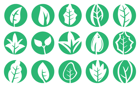 chlorophyll: Vector illustration of leaf in various shapes in green circle. Design set for symbols on natural concept isolated on white background. Illustration