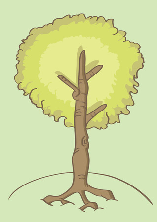 illustration of a tall leafy tree deeply rooted to the ground in cartoon style with outline isolated on soothing pastel green background.