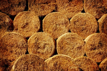 Bales of hay in grunge photo