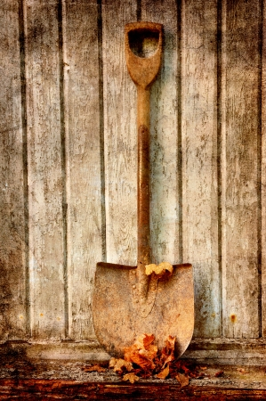 old fashion spade with dry leaves against an old wooden wall.