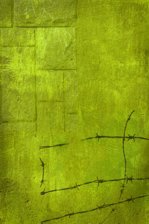 Barbed wire stonewall in green Stock Photo - 15889365
