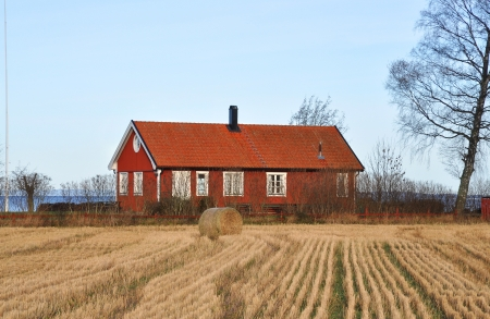 Red cottage by a wheat field with a lake in the background Editorial