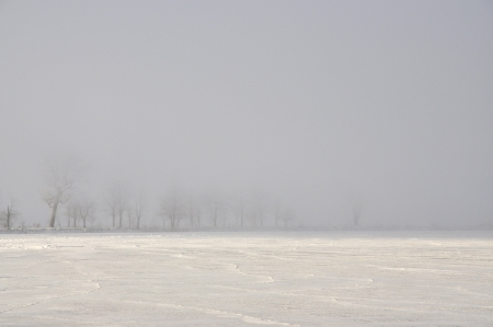 Trees in fog next to a frozen lake. photo