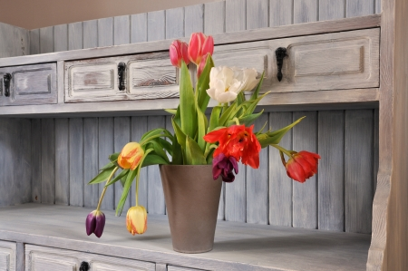 Tulips on an old fasioned bookshelf in shabby chic,  photo