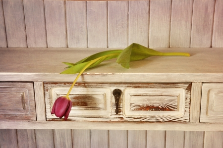 Single purple tulip on a shelf in shabby chic. photo