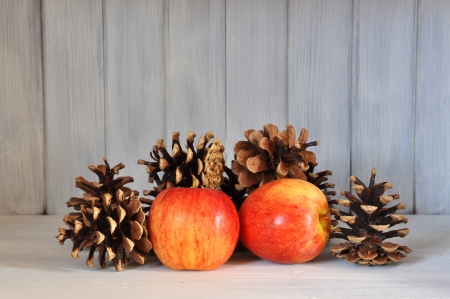 Red apples and pine cones as interior design. photo