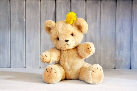 Old teddy bear from the 1960 s photo