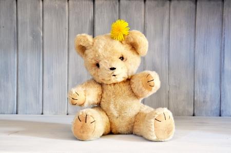 teddy bear: Viejo oso de peluche del 1960 s