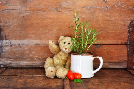 Vintage teddy bear with herbs and tomatoes,  photo
