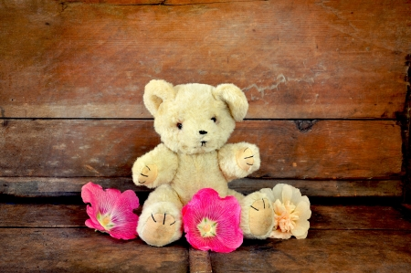 Teddy bear with hollyhock flowers on an old bench