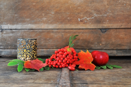 Autumn still life with rowan berries, rose hip and apple