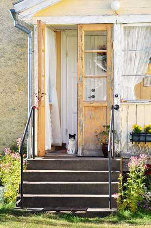 run down: Picturesque, run down house with cat sitting on the front porch. Stock Photo