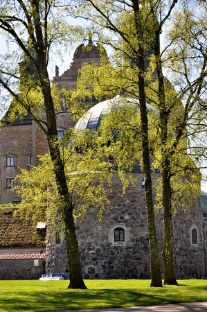 birch trees: Vadstena castle through birch trees in the spring. Editorial