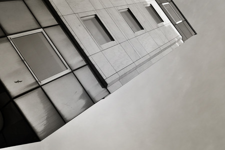 reflexion: edificio de gran altura con la reflexión de aves.