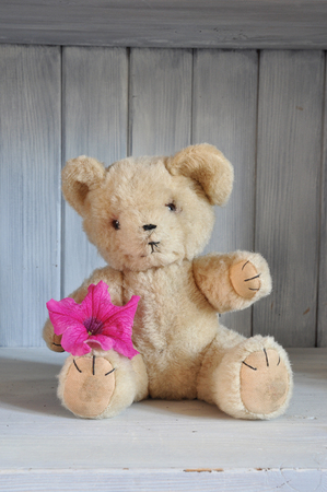Retro teddy bear from the 1960s sitting on wooden shelf holding a pink flower.