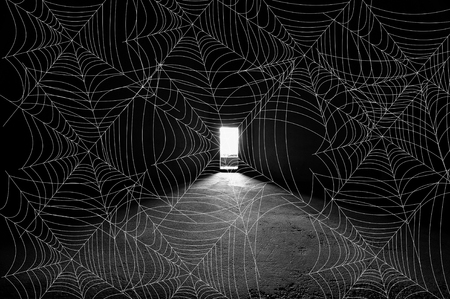 Abstract image of spider webb pattern in front of bright door way