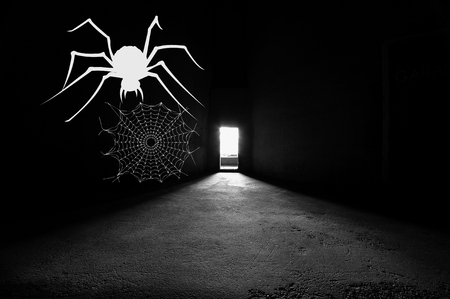 Bright door way in dark silo with white spider and webb on the wall.