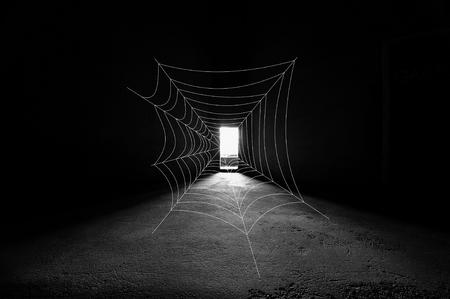 Simple spider webb in fron of bright door way in dark building