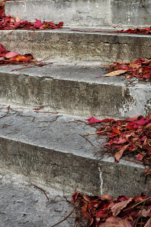 Red leaves on old stone steps, short depth of field.