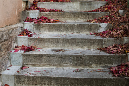 Autumn leaves on old stone steps.