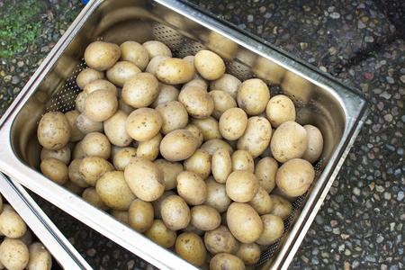 Fresh potatoes in a metal tray Stock Photo