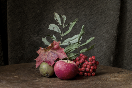 Autumn still life with apple and rowan berries with maple and oak leaves