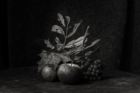 Black and white autumn still life of fruits and leaves and berries. Stock Photo