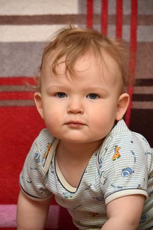 A little boy. Portrait.