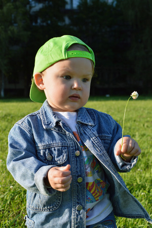 kiddy: The little boy sees a dandelion in a city Park. Stock Photo
