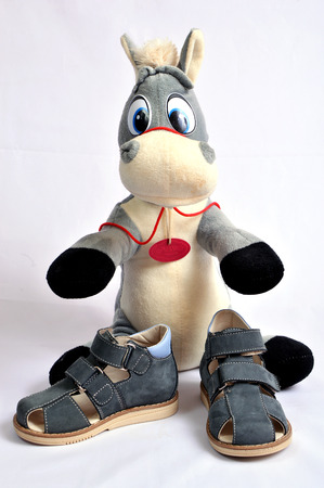 Gray donkey and dktskie sandals on a white background.