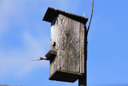 Old nestling box in the sky background