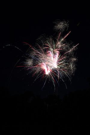 Fireworks on Black Backdrop Banco de Imagens