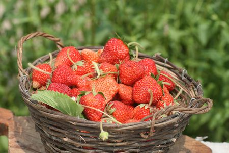 bast basket: Bast basket with a ripe strawberry on a grass Stock Photo