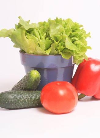 election of the most poulares vegetables, a healthy diet