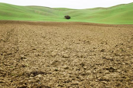 asciano: Peculiar soil in the area between Siena and Asciano (Italy)