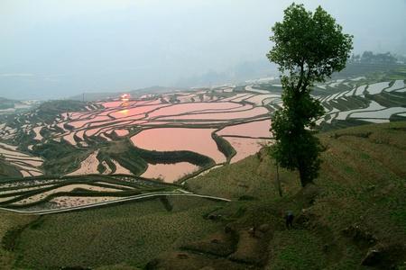 yunnan: Yunnan terrace