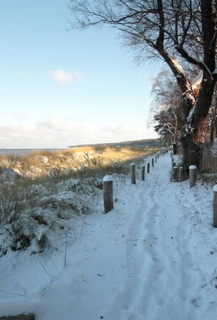 Snow-covered way behind the dunes on the beach of Lubmin near Greifswald. photo
