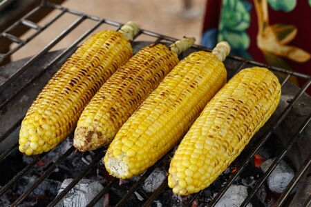 Grilled fresh sweet corn on the grille, ready to serve.Closeup yellow corn on the cob,tasty and delicious on charcoal grill.Thailand street food,Local food,Organic corn.Natural corn.