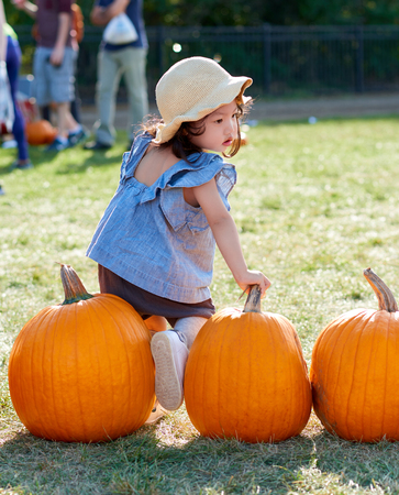 Asian baby girl is picking pumpkins from the Pumpkin Patch.