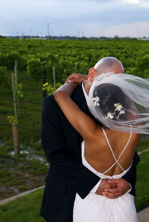 A bride and groom sharing a kiss after their marriage ceremony.