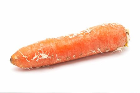 Greater carrots on a white background.