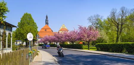blossom time: Blossom time in Luebben, Spreewald, Lower Lusatia, Brandenburg, Germany